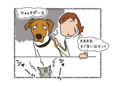 04042018_dog5.jpg