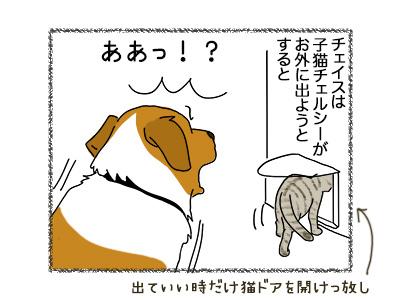 05062018_dog1.jpg