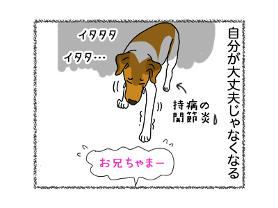 05062018_dog5.jpg