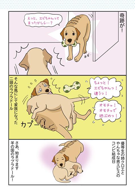06042018_dog2.jpg