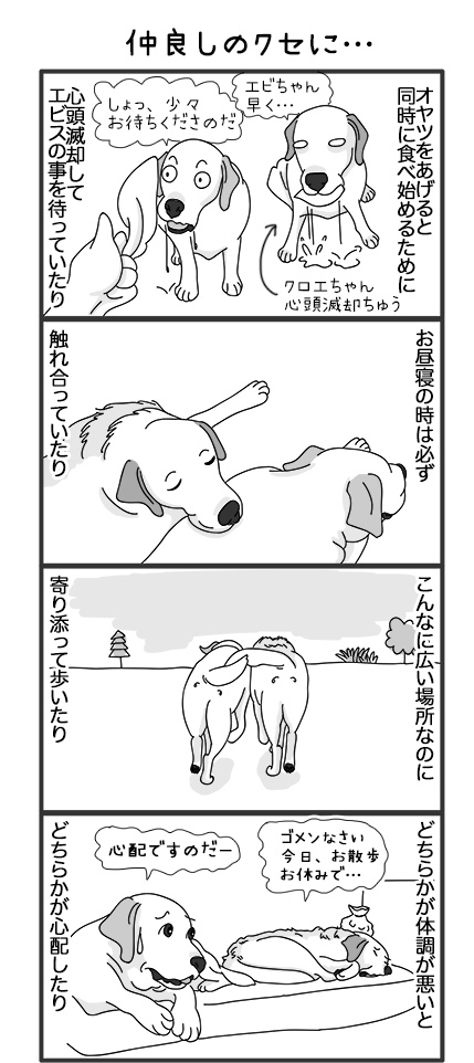 07052018_dogOmakeManga1.jpg