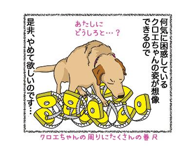 08052018_dog4.jpg
