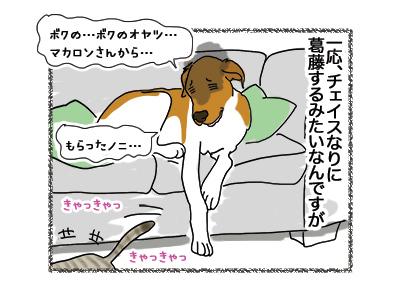 10052018_dog3.jpg