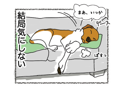 10052018_dog4.jpg