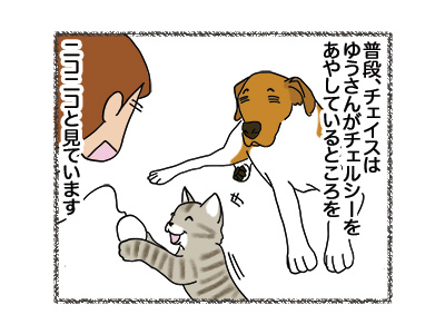 11052018_dog1.jpg