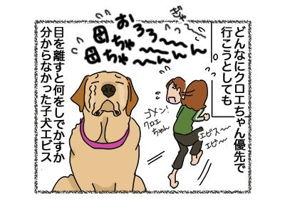 17042018_dog2.jpg