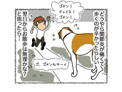 17052018_dog2.jpg