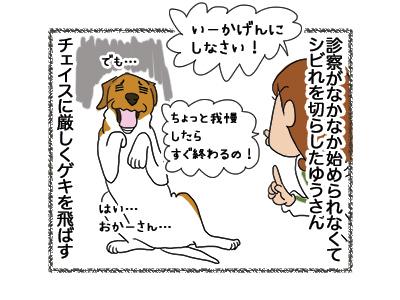 27042018_dog3.jpg