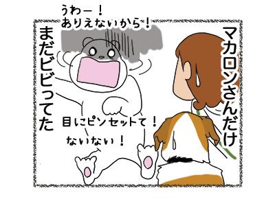 27042018_dog5.jpg