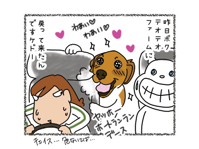 30032018_dog1.jpg