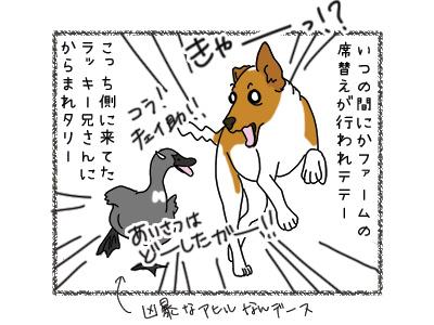 30032018_dog3.jpg