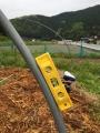 pole balancer