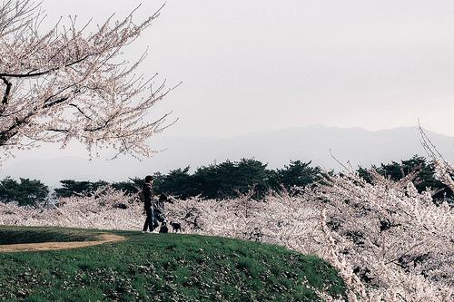 201805_Kanazawa.jpg