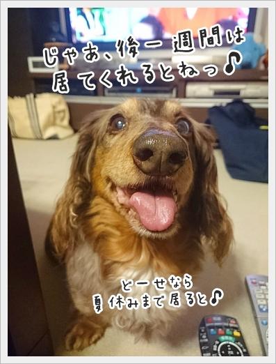 fc2_2018-05-19_01.jpg