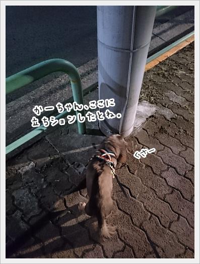 fc2_2018-05-30_02.jpg
