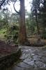 羅漢寺石段