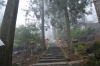 高住神社石段