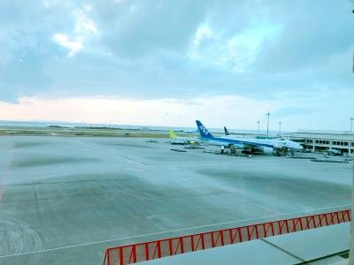 180315_okinawa_04.jpg