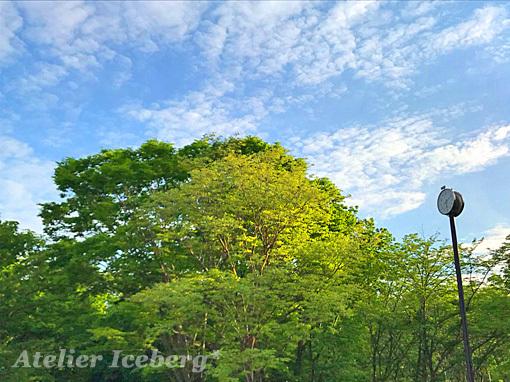 20118_04_33.jpg