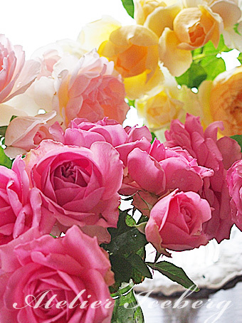 rose2015_155.jpg