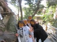 来宮神社 楠木