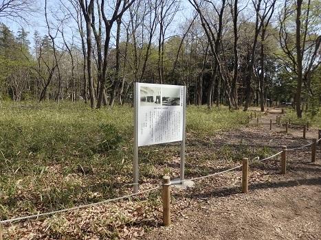 きれぎれの風彩「無線山の桜並木・トラスト地」180410-09