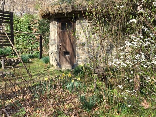 庭の丸い小屋の春