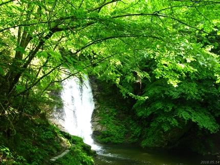 トッカケの滝[平成30年5月15日(火)更新]
