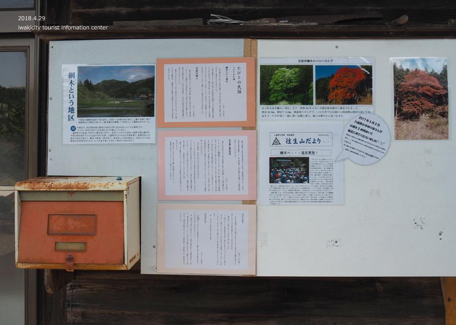 田人町綱木地区のクマガイソウが開花しました! [平成30年4月29日(日)更新]6