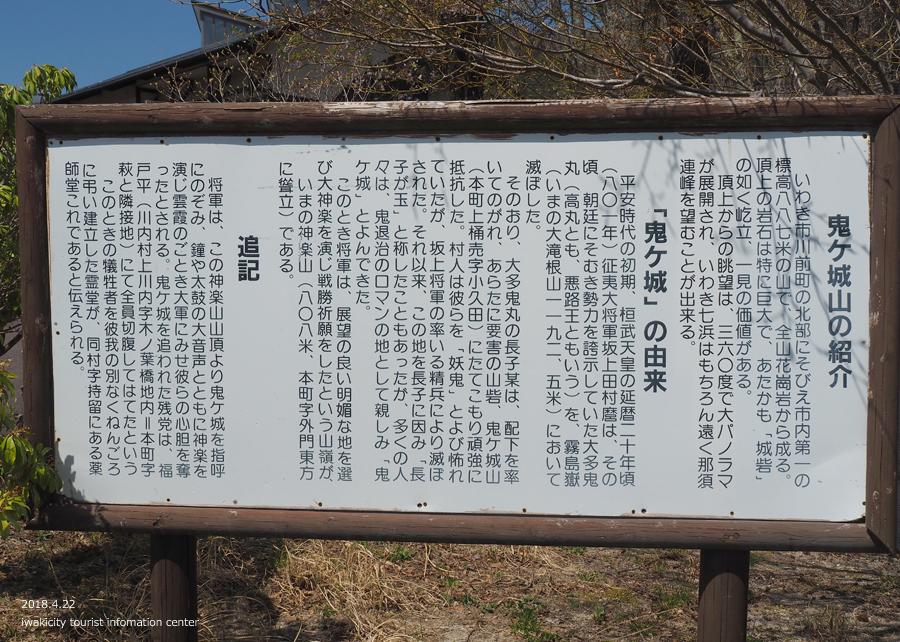 《いわき市桜情報》いわきの里鬼ヶ城の桜 [平成30年4月22日(日)更新]4