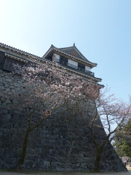 松山城 北隅櫓 & ソメイヨシノ