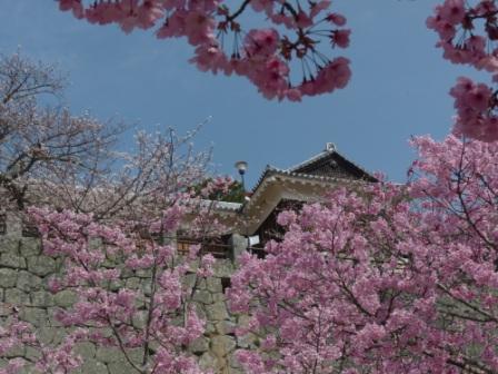 松山城 陽光 2