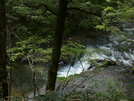 湯川の流れ 3