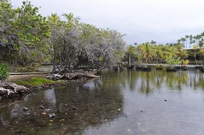 kalahuipua'a historic trail