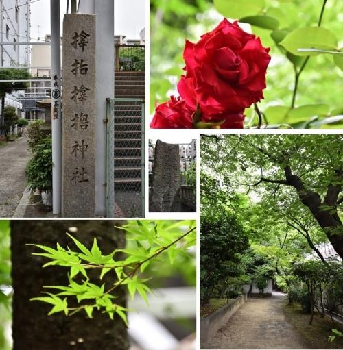 サムハラ神社3