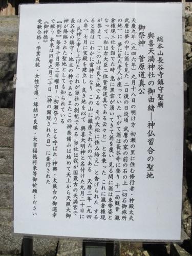 初瀬の里 (170)
