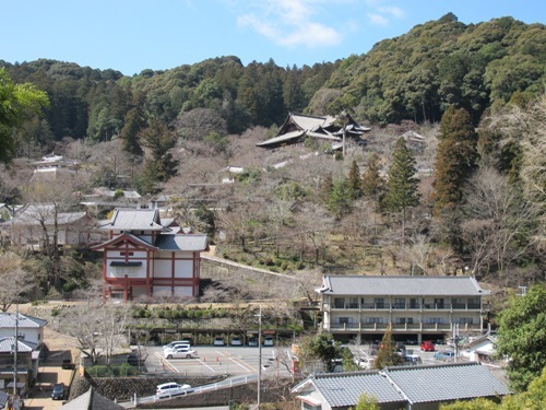 初瀬の里 (185)