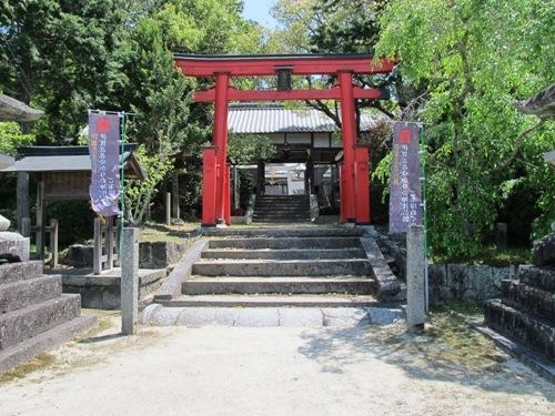 忍者回廊3 (229)