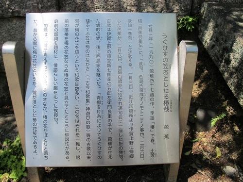 忍者回廊3 (142)