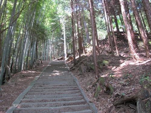忍者回廊3 (145)