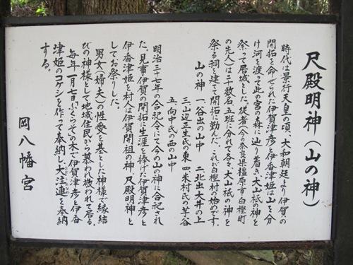 忍者回廊3 (201)