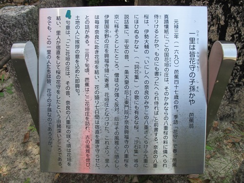 忍者回廊3 (232)