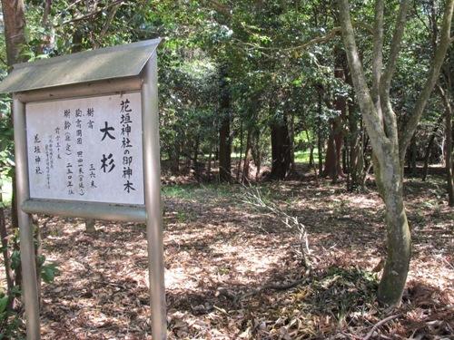 忍者回廊3 (240)