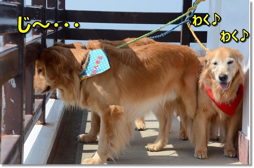 DSC_9280じ~