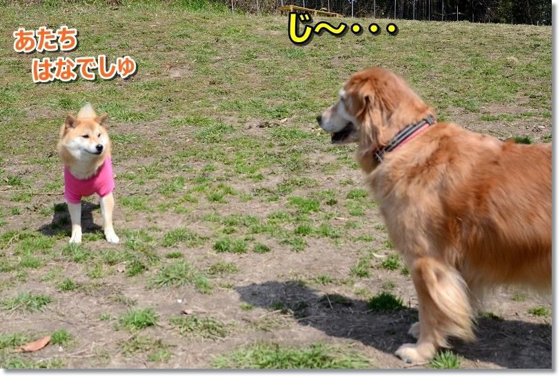 DSC_8521じ~