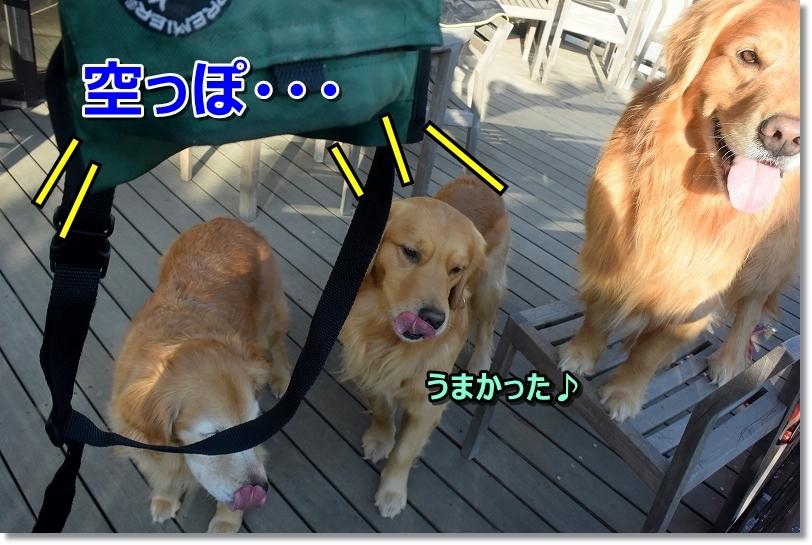 DSC_1544空っぽ