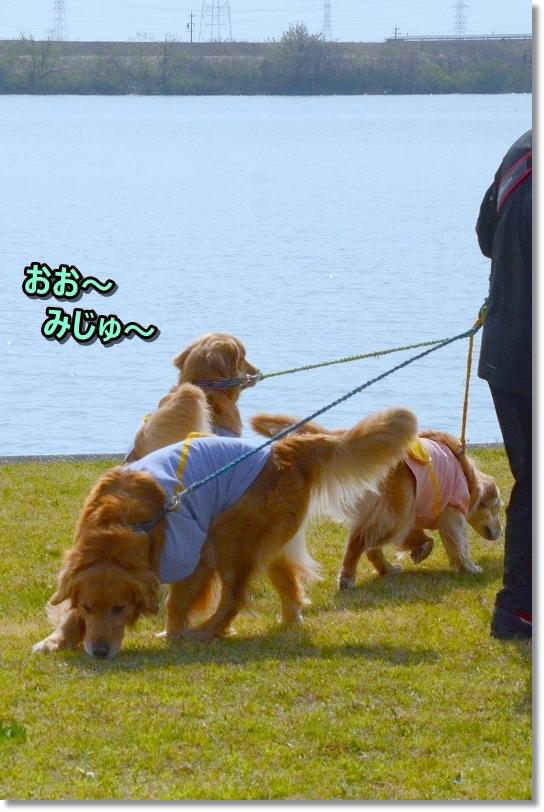 DSC_9698木曽三川公園へ
