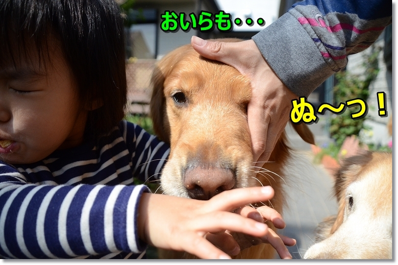 DSC_9600くで~!~