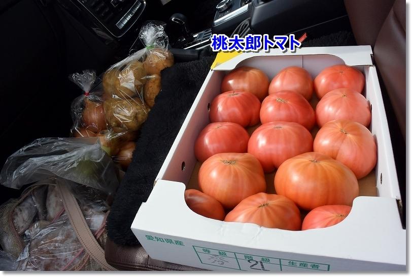 DSC_1768桃太郎トマト