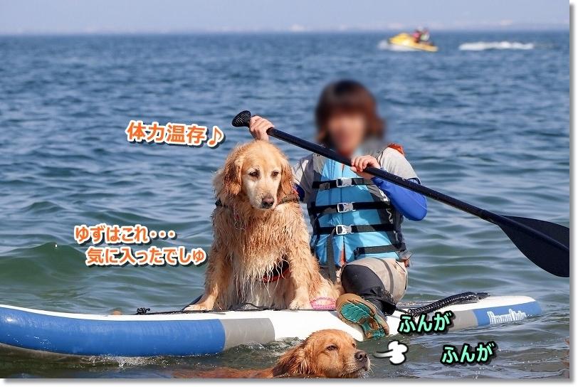 201855-6 琵琶湖_180518_0040